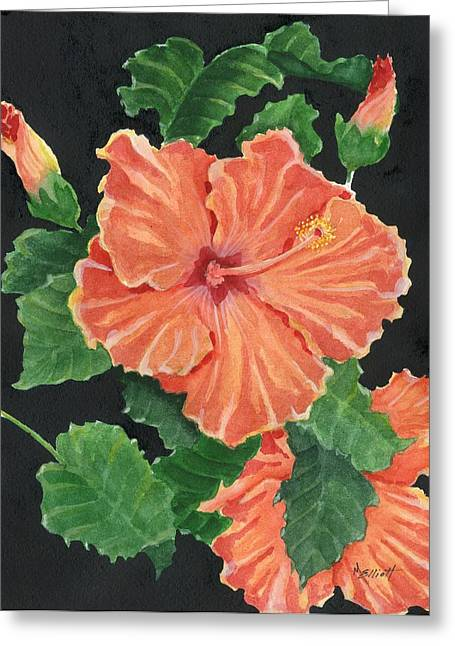 Hibiscus Greeting Cards - Showy Hibiscus Greeting Card by Marsha Elliott
