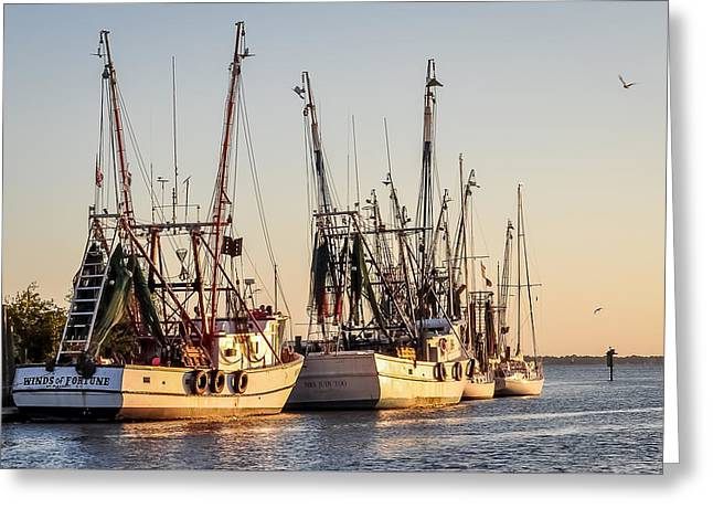 Mt. Pleasant Sc Greeting Cards - Shrimp Boats at Sunset Greeting Card by Curtis Cabana