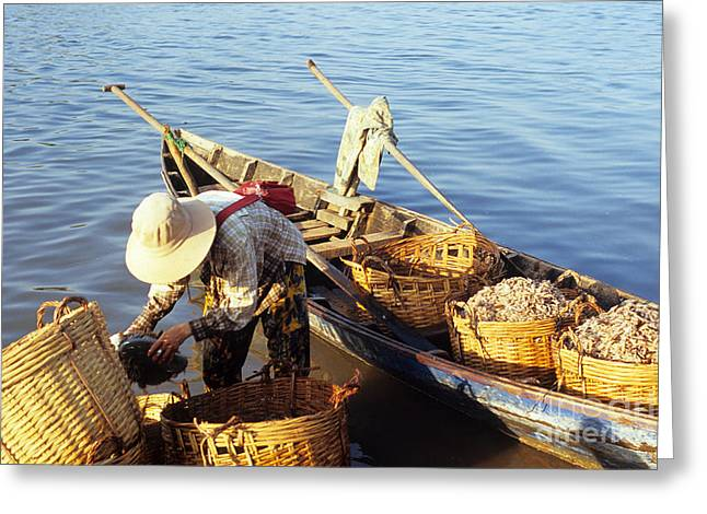 Row Boat Greeting Cards - Shrimp Lady 01 Greeting Card by Rick Piper Photography