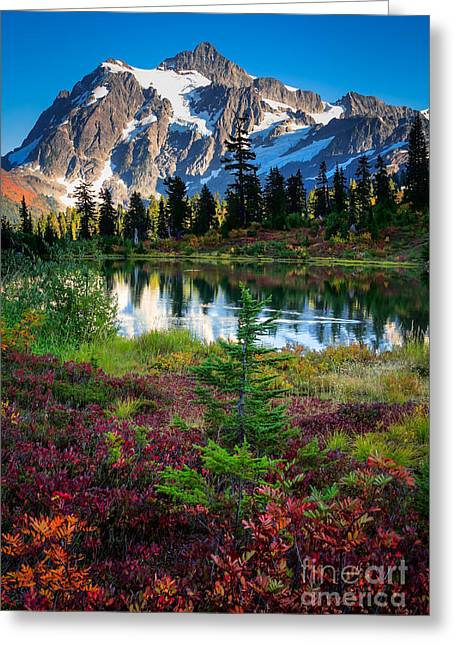 Deciduous Greeting Cards - Shuksan Autumn Greeting Card by Inge Johnsson
