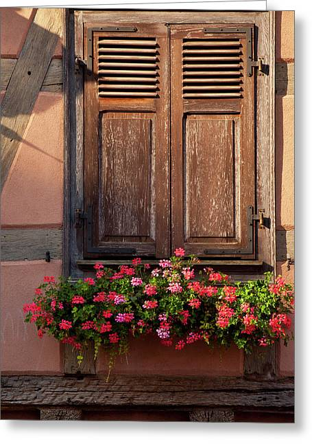 Shuttered Window And Flower Box Greeting Card by Brian Jannsen