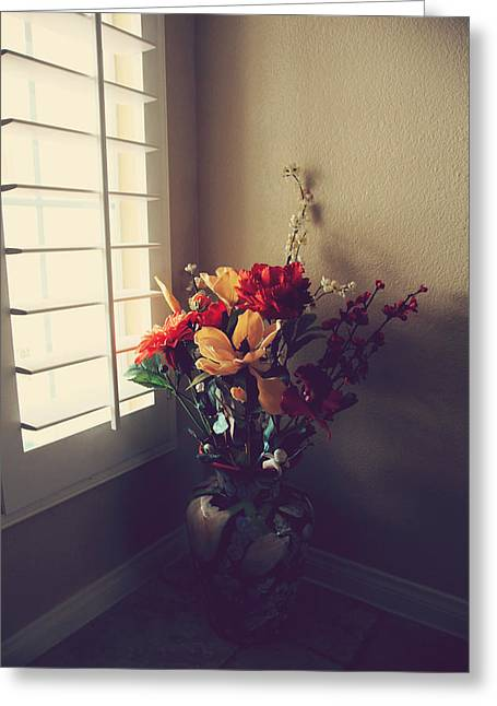 Window Light Greeting Cards - Shutters Greeting Card by Laurie Search