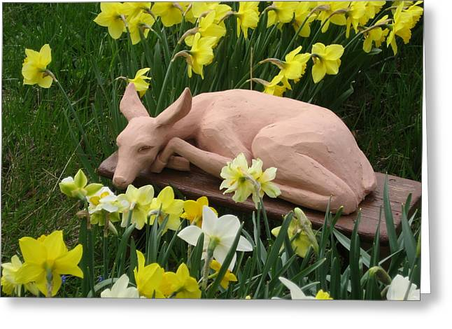 Calm Sculptures Greeting Cards - Shy Fawn Hiding in the Daffodills Greeting Card by Deborah Dendler
