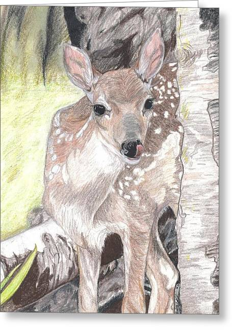 Fawn Mixed Media Greeting Cards - Shy Fawn Greeting Card by Maricay Smeenk