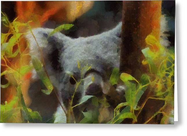 Shy Koala Greeting Card by Dan Sproul