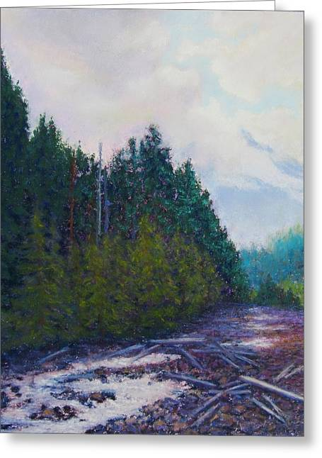 Mt Pastels Greeting Cards - Shy Mt Baker Greeting Card by Sharon Frey
