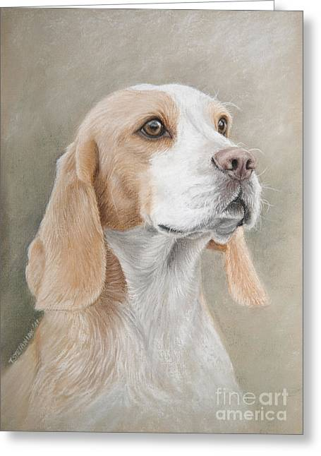 Dog Pastels Greeting Cards - Beagle portrait Greeting Card by Tobiasz Stefaniak