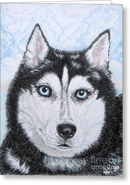 Working Conditions Drawings Greeting Cards - Siberian Husky Greeting Card by Yvonne Johnstone