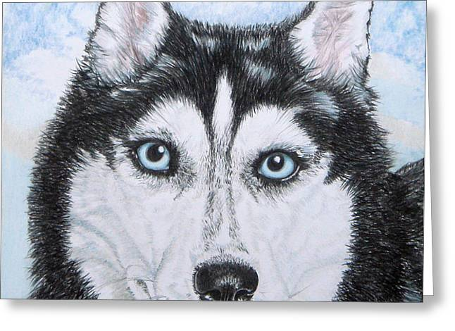 Siberian Husky Greeting Card by Yvonne Johnstone