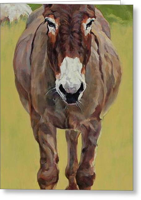 Burros Greeting Cards - Sicilian Greeting Card by Patricia A Griffin