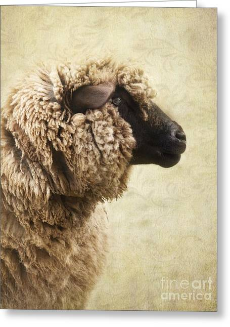Wooly Greeting Cards - Side Face Of A Sheep Greeting Card by Priska Wettstein