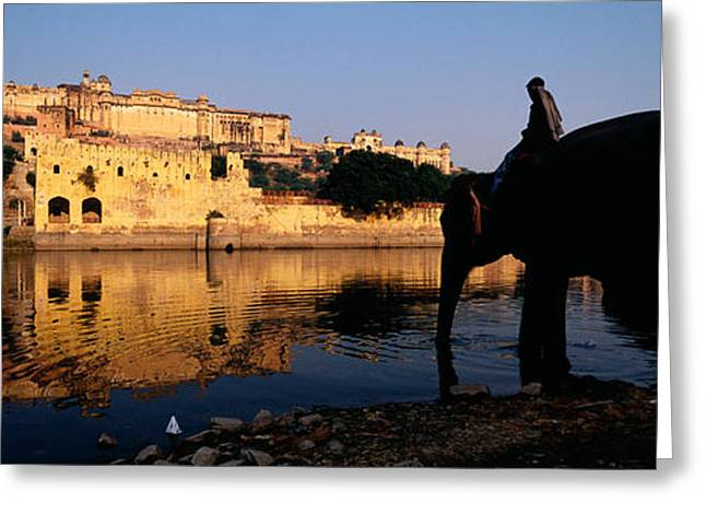 Jaipur Greeting Cards - Side Profile Of A Man Sitting On An Greeting Card by Panoramic Images