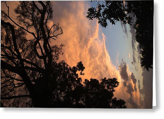 Multidimensional Greeting Cards - Side Sky Greeting Card by Nicki La Rosa