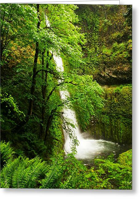 Eagle Creek Greeting Cards - Side View Of Tunnal Falls Greeting Card by Jeff  Swan