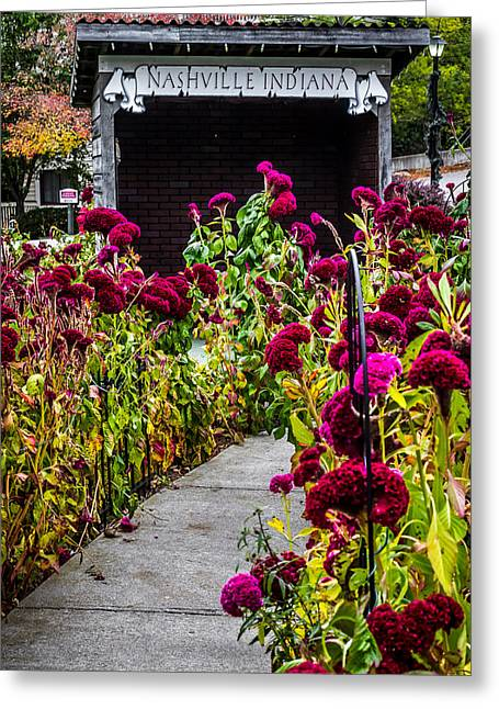 Indiana Flowers Greeting Cards - Sidewalk to Nashville Indiana Greeting Card by Ron Pate