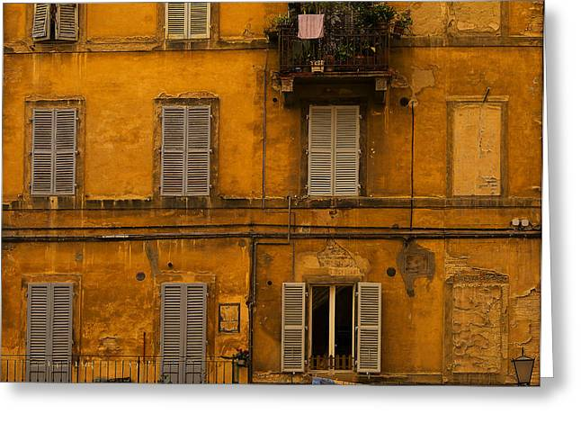 Sienna Italy Greeting Cards - Sienna Life Greeting Card by Phyllis Webster