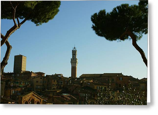 Sienna Italy Greeting Cards - Sienna Serenity Greeting Card by Barbara Stellwagen