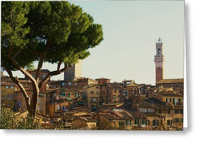 Sienna Italy Photographs Greeting Cards - Sienna Skyline Greeting Card by Barbara Stellwagen