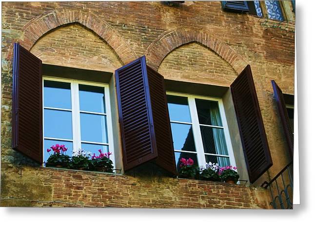 Sienna Italy Greeting Cards - Sienna Windows Greeting Card by Barbara Stellwagen