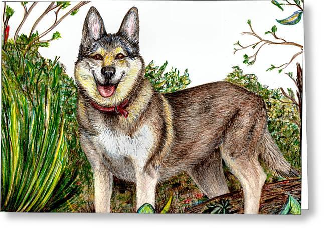 Husky Greeting Cards - Sierra Greeting Card by Joy Reese