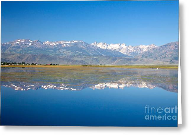 Bridgeport California Greeting Cards - Sierra Nevada Mountains Greeting Card by Richard and Ellen Thane