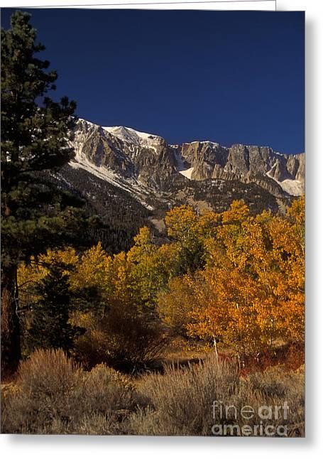 Sierra Nevadas In Autumn Greeting Card by Ron Sanford