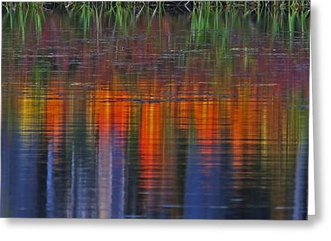 Scenic Drive Greeting Cards - Sierra Serenity  Greeting Card by Duncan Selby