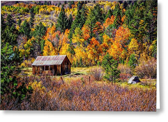 Rustic Cabin Greeting Cards - Sierra Solitude 2 Greeting Card by Scott McGuire