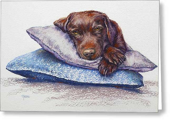 Puppies Pastels Greeting Cards - Siesta Greeting Card by Cynthia House