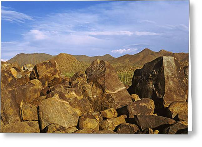 Petroglyph Greeting Cards - Signal Hill With Petroglyphs, Saguaro Greeting Card by Panoramic Images
