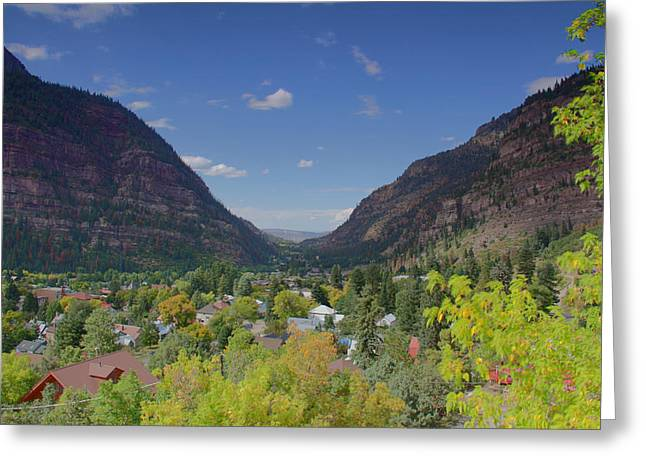 Signs Of Fall Greeting Card by Greg Brown