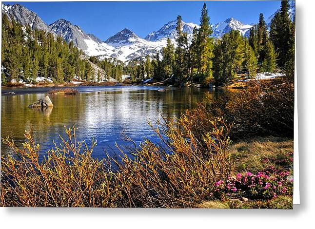 Little Lakes Valley Greeting Cards - Signs of Spring Greeting Card by Lynn Bauer