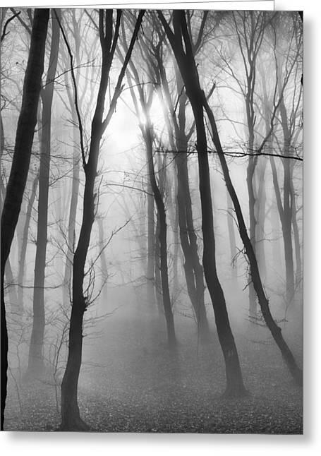 Deep Fears Greeting Cards - Silence 5 Greeting Card by Dobromir Dobrinov