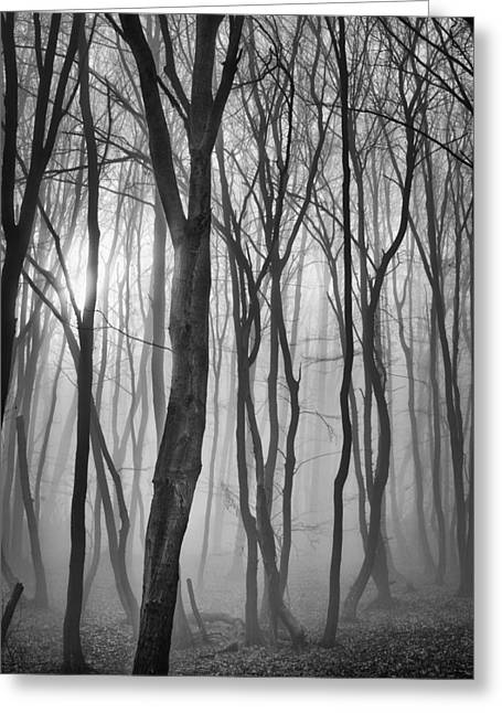 Deep Fears Greeting Cards - Silence 6 Greeting Card by Dobromir Dobrinov