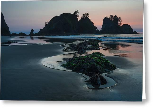 Beaches In Washington Greeting Cards - Silence Greeting Card by Gene Garnace