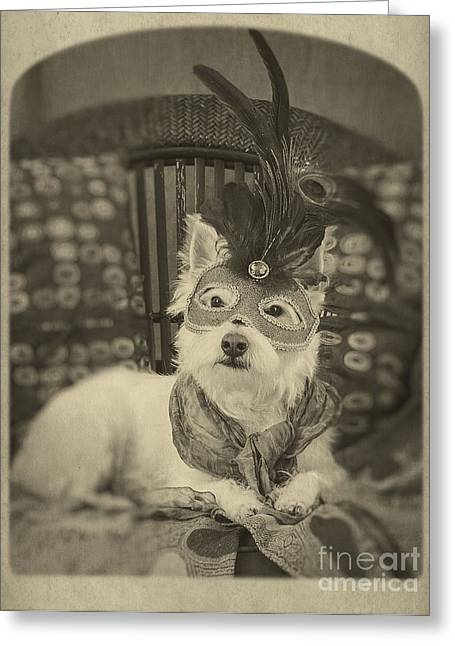 Canine Greeting Cards - Silent Film Star Greeting Card by Edward Fielding