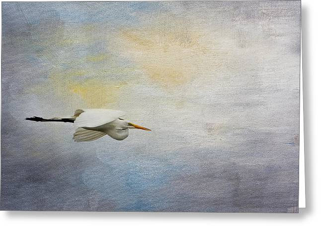 Ardea Greeting Cards - Silent Flight Greeting Card by Jai Johnson