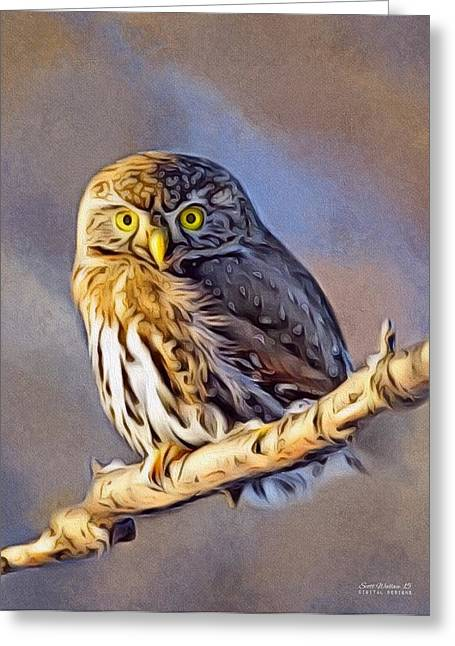 Barn Yard Greeting Cards - Silent Hunter Greeting Card by Scott Wallace