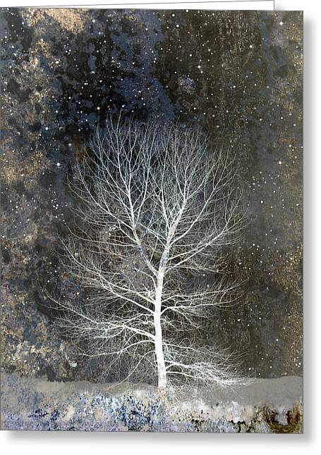 Snowy Night Greeting Cards - Silent Night Greeting Card by Carol Leigh