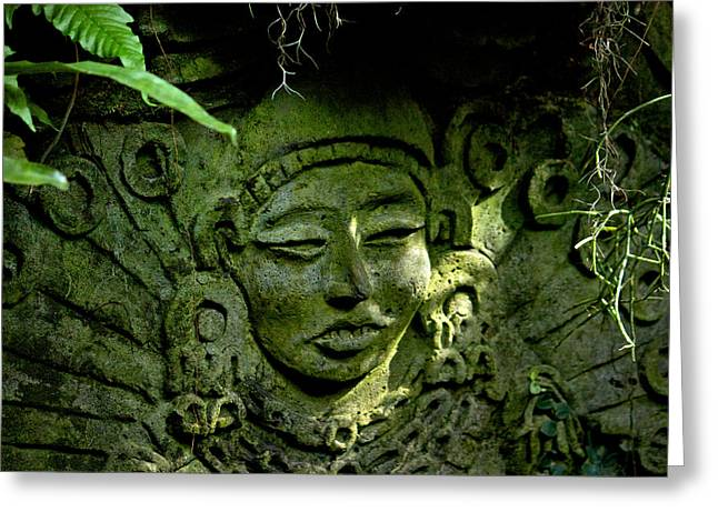 Mayan Pottery Greeting Cards - Silent Warning Greeting Card by Andrew Chianese