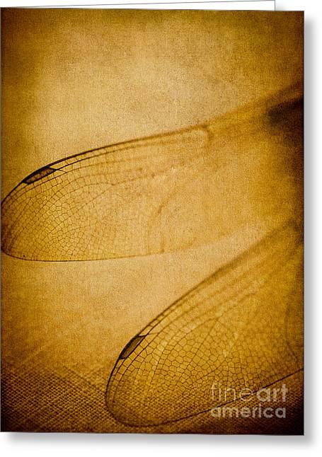 Silent Wings Greeting Card by Jan Bickerton