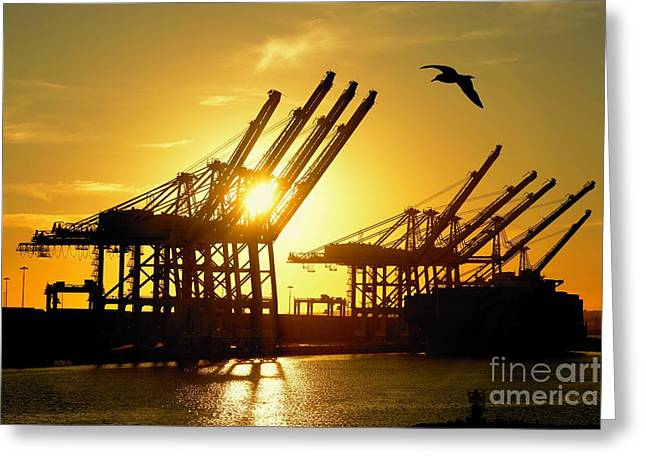 Fed Greeting Cards - Silhouette Container Dock Greeting Card by Patrick Witz