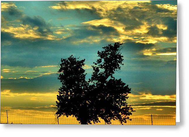 Colors Of Autumn Greeting Cards - Silhouette Greeting Card by Dan Sproul