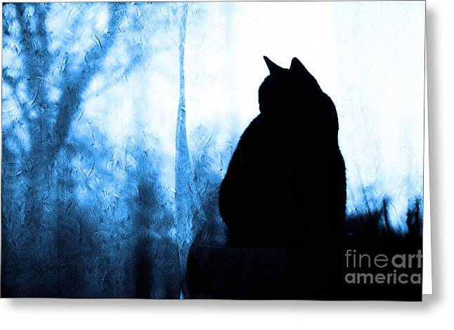 Pussy Mixed Media Greeting Cards - Silhouette In Blue Greeting Card by Andee Design