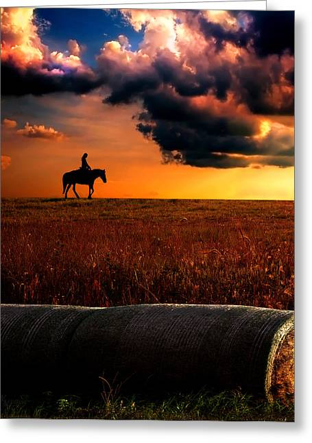 Silhouettes Of Horses Greeting Cards - Silhouette Greeting Card by Mechala  Matthews