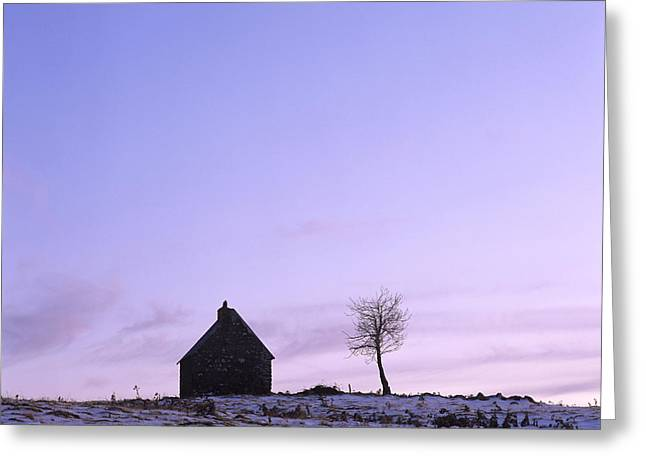 Snow Covered Field Greeting Cards - Silhouette of a farm and a tree. Cezallier. Auvergne. France Greeting Card by Bernard Jaubert