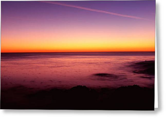Beach Photography Greeting Cards - Silhouette Of Lone Cypress Tree Greeting Card by Panoramic Images