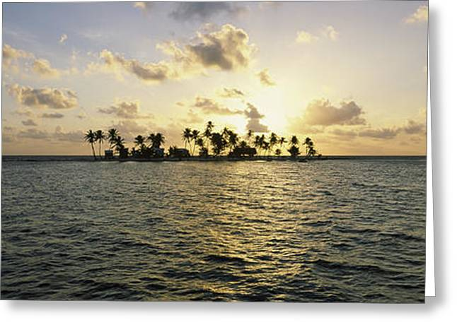 Cay Greeting Cards - Silhouette Of Palm Trees On An Island Greeting Card by Panoramic Images