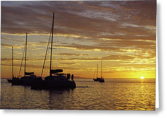 Sailboats In Water Greeting Cards - Silhouette Of Sailboats In The Sea Greeting Card by Panoramic Images