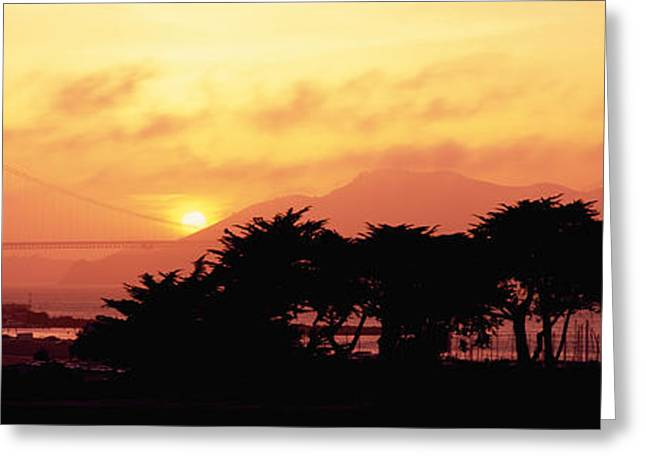 Famous Silhouettes Greeting Cards - Silhouette Of Trees At Dusk Greeting Card by Panoramic Images